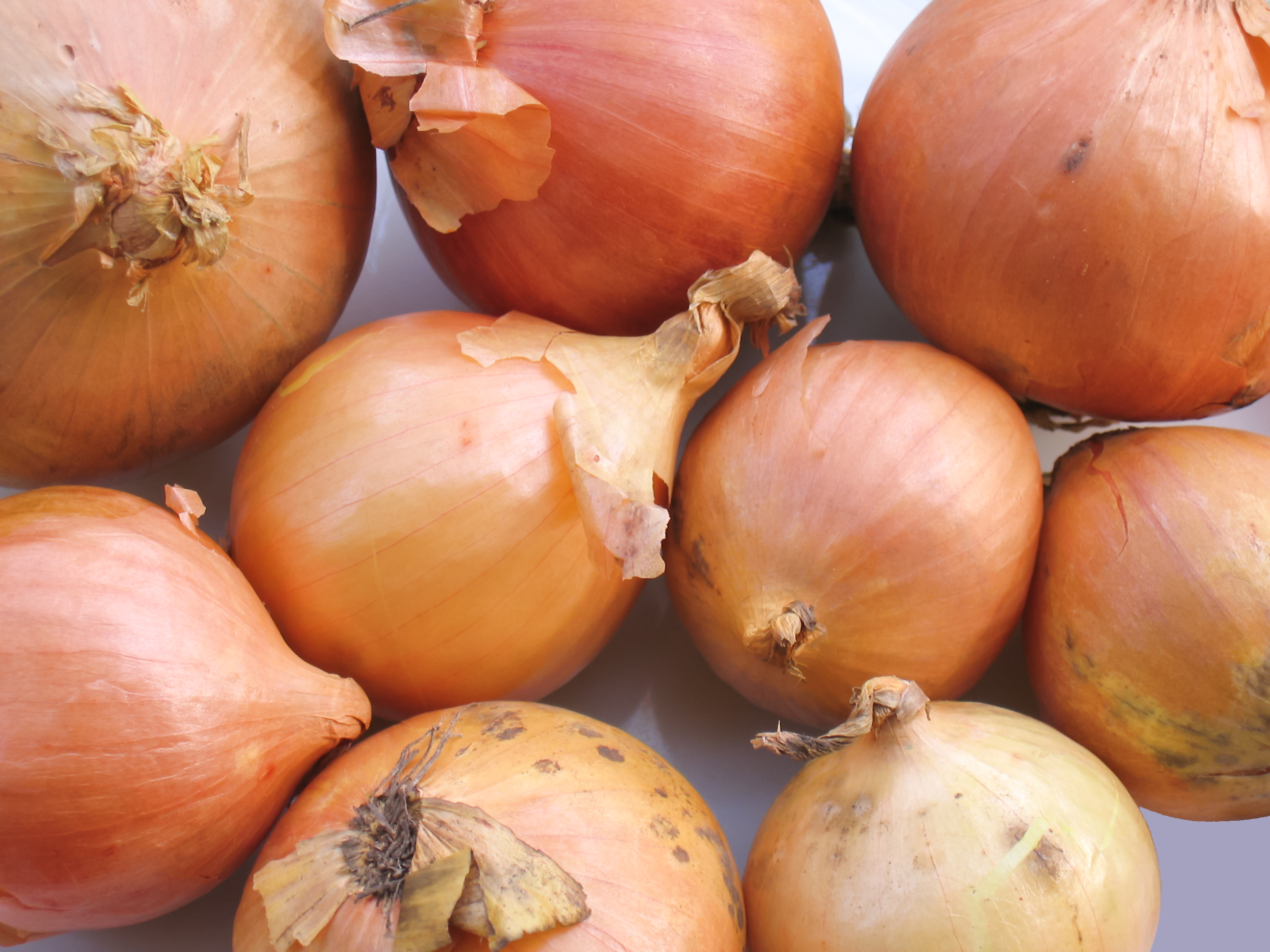 Interesting info on onions and the flu rootedforlife 39 s blog - Unknown uses for an onion ...