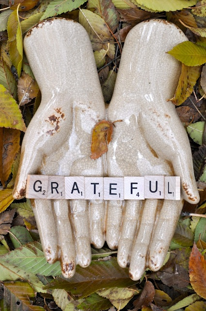 Practicing Gratitude  - A daily practice that will change your life