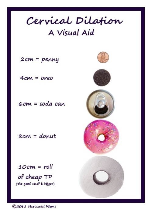 Cervical Dilation- A Visual Aid