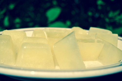 Lemon ice cubes for morning sickness relief